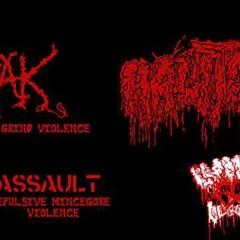 Maďarský grindcore – gore útočí na FUGU – 02.07.2015, Bratislava, Fuga