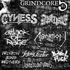 Power Grindcore 5 v Brne už tento piatok!!!