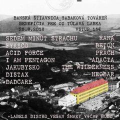 Prečo by ste mali tento rok navštíviť festival Jašterice IV v Banskej Štiavnici!