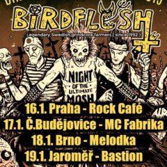 KONCERT – Birdflesh, Gutalax, Kandar, či Spineless Fuckers v Melodke už o týždeň!