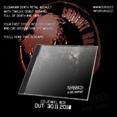 Recenzia – Stabbed – In the Shadows – Support Underground – 2018